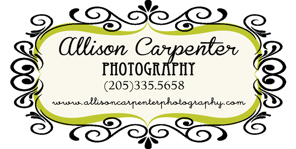 Allison Carpenter Photography logo